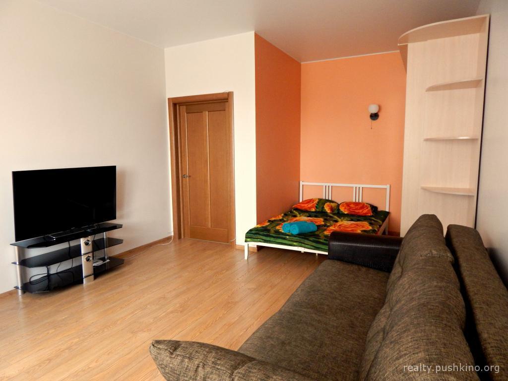 Снять однокомнатную квартиру в пушкине от собственника
